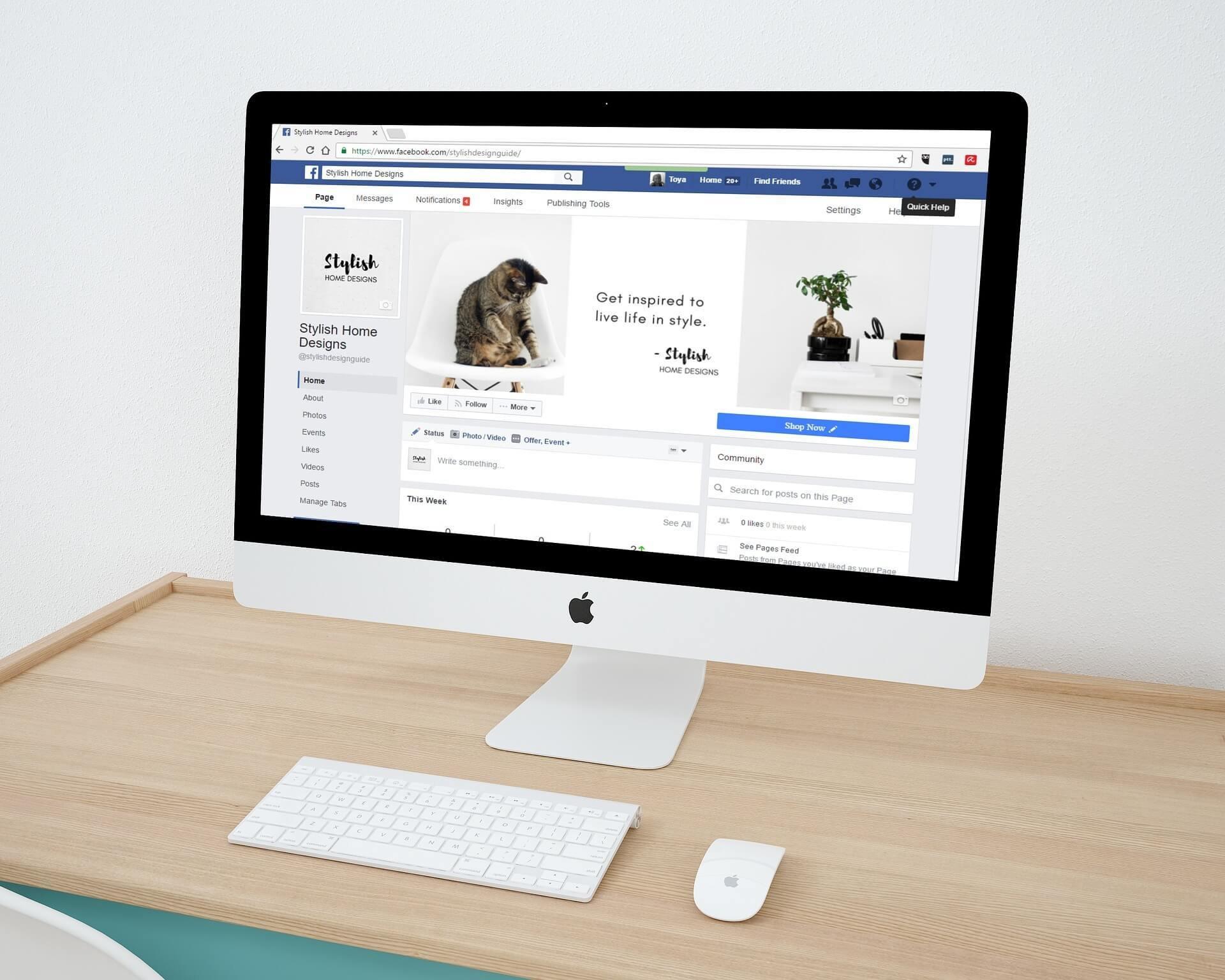 domain name for social media store